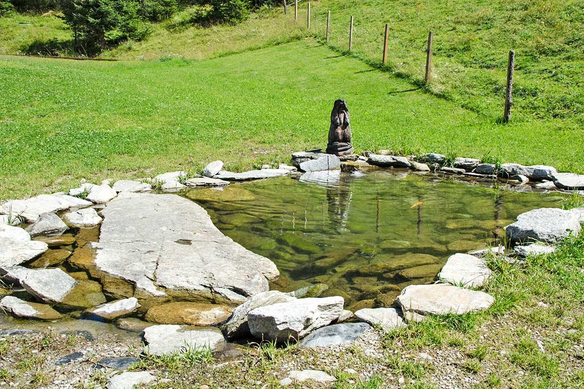 Wasser am Graukogel